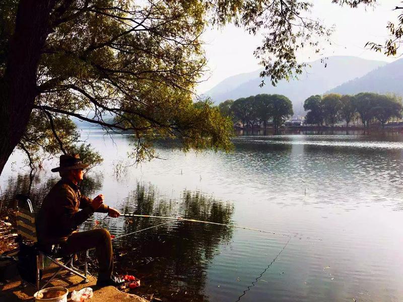《湖中有诗歌》--WGY16